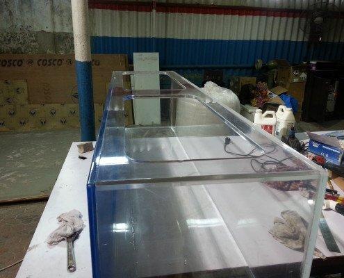 acrylic aquariums in india madoverfish aquariums water arts pvt ltd. Black Bedroom Furniture Sets. Home Design Ideas