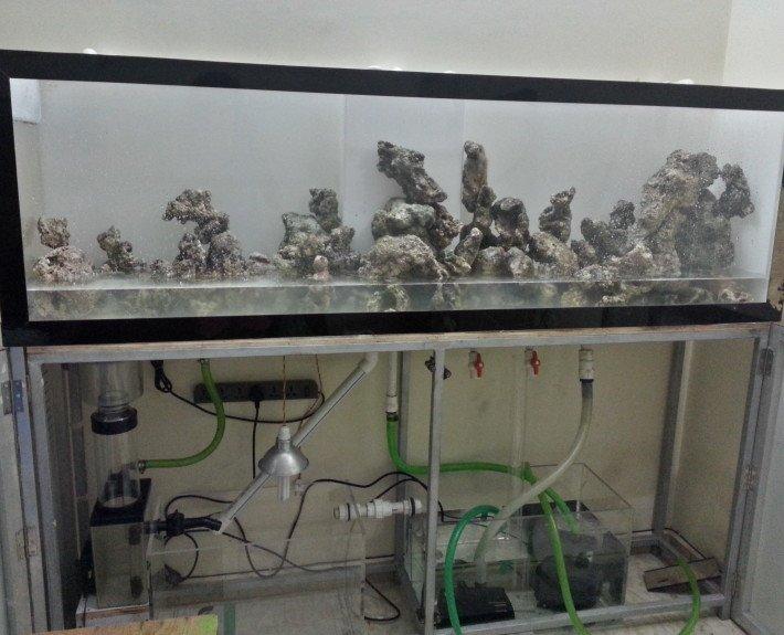 smart plumbing for aquariums in india