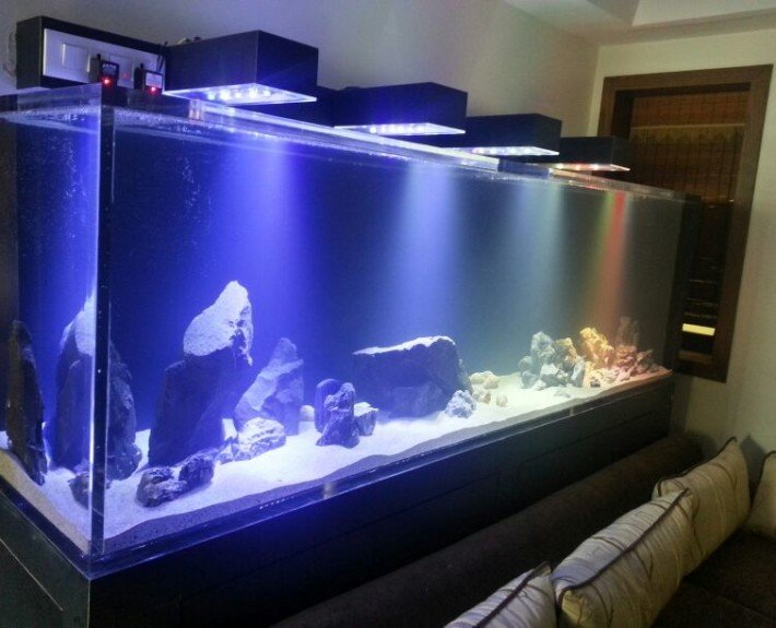 custom led lighting for aquarium. Black Bedroom Furniture Sets. Home Design Ideas