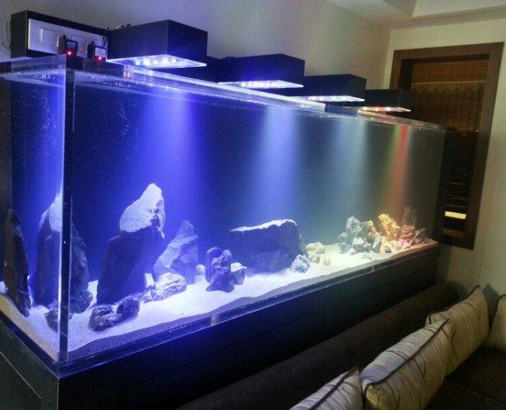 Custom Led Lighting For Aquarium
