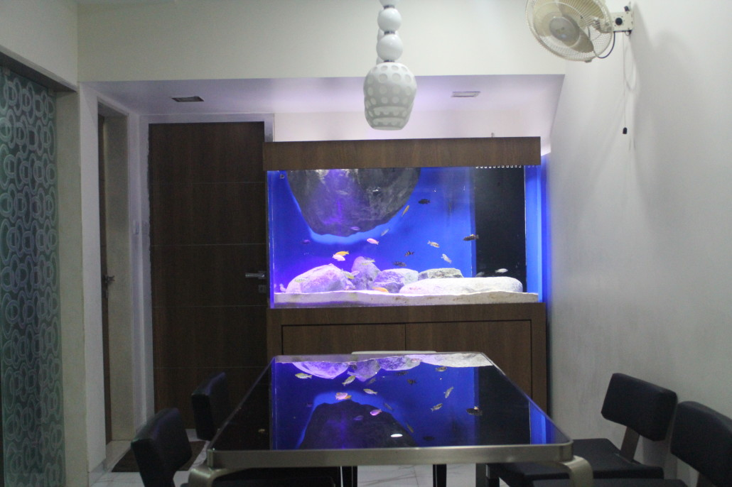acrylic aquariums madoverfish aquariums water arts company. Black Bedroom Furniture Sets. Home Design Ideas