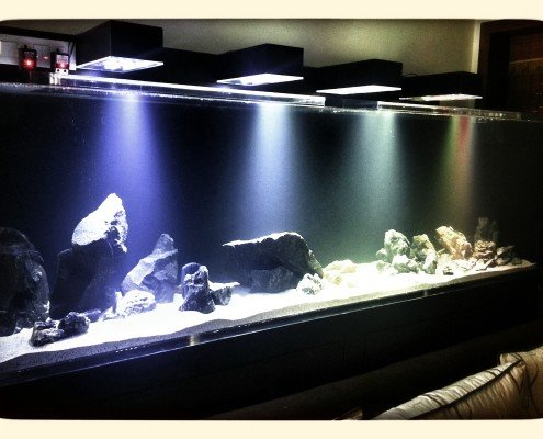 residential aquariums in india madoverfish. Black Bedroom Furniture Sets. Home Design Ideas